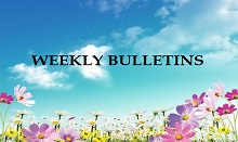 Weekly Bulletins